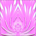 Artistic : Lotus Flower