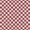 JLE Gingham Cotton
