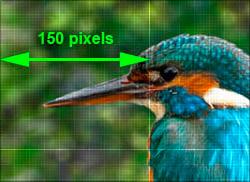 Pixel Awareness